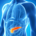 body-pancreas-image-1